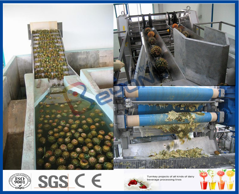 Pineapple Processing Juice Factory Machinery With Fruit Juice Packaging Machine